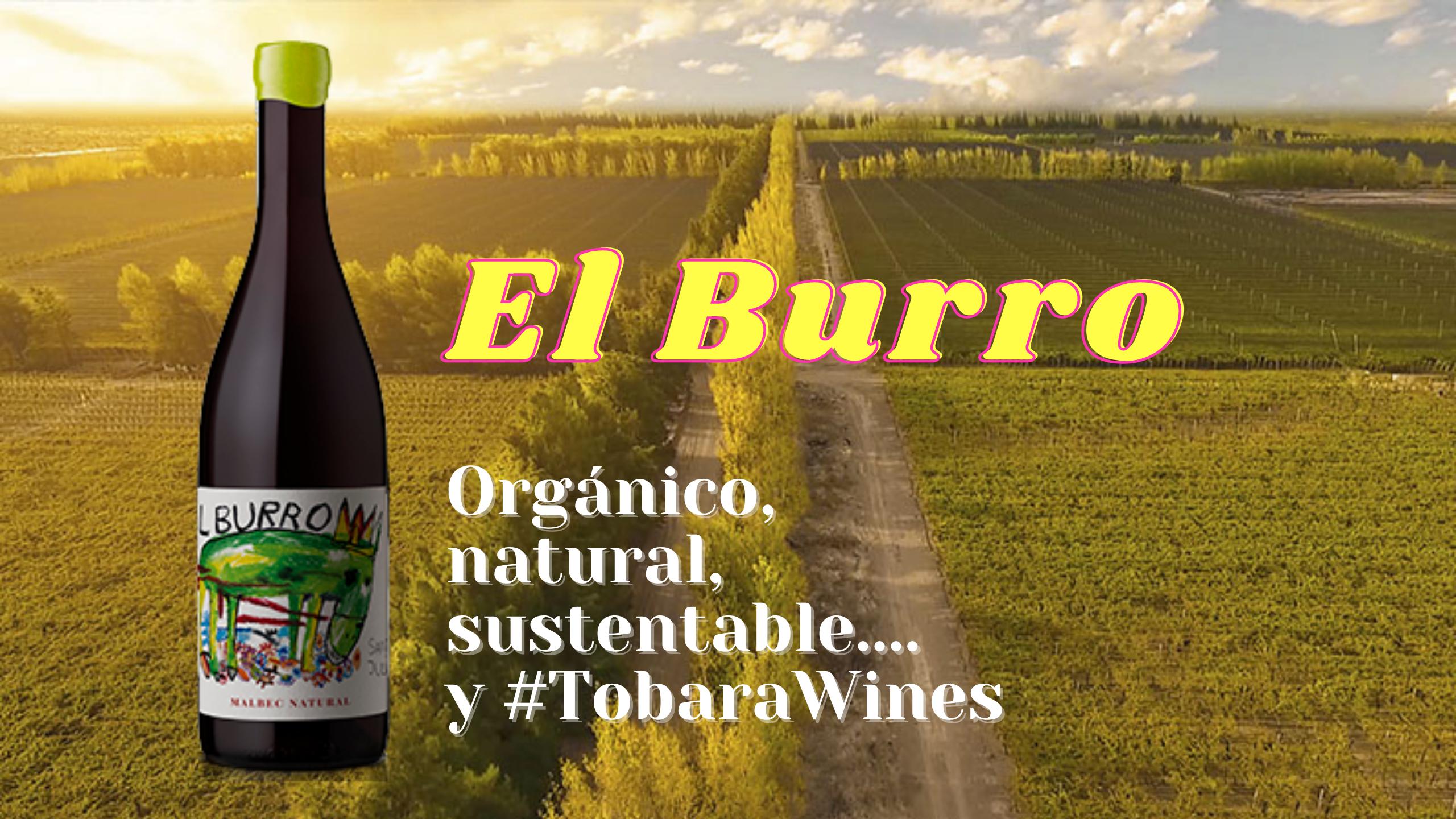 El Burro Malbec Natural 2019